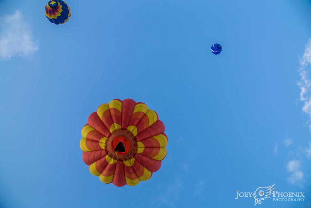 Balloonswm-6358.jpg