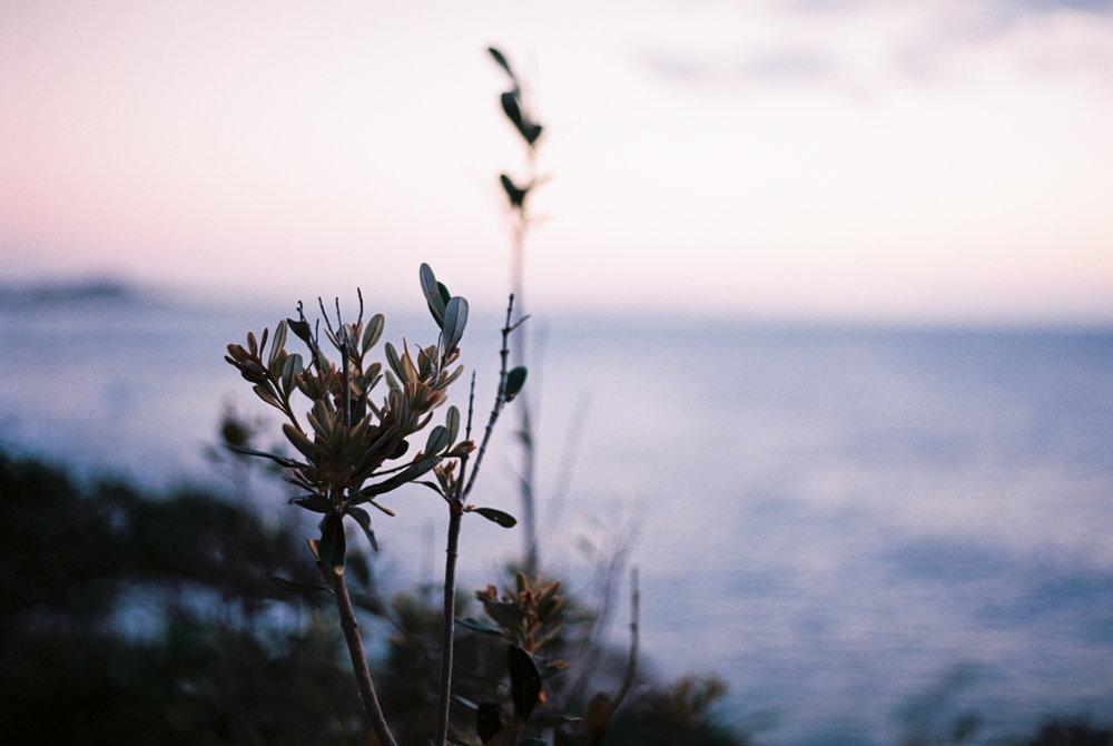 sunrise-yaroomba-beach-cynthia-lee-photographer-2.jpg