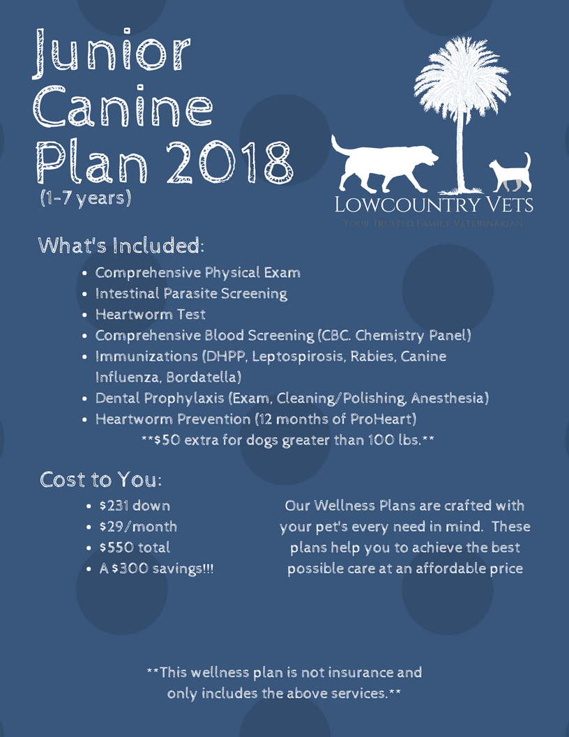 Junior Canine Plan 2018.png