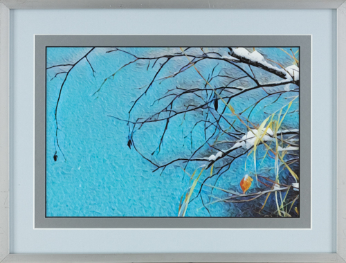 Snow covered branches - 14x16 in., rental framed $30