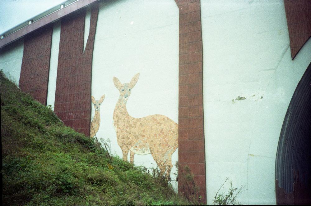 """Street Art"""