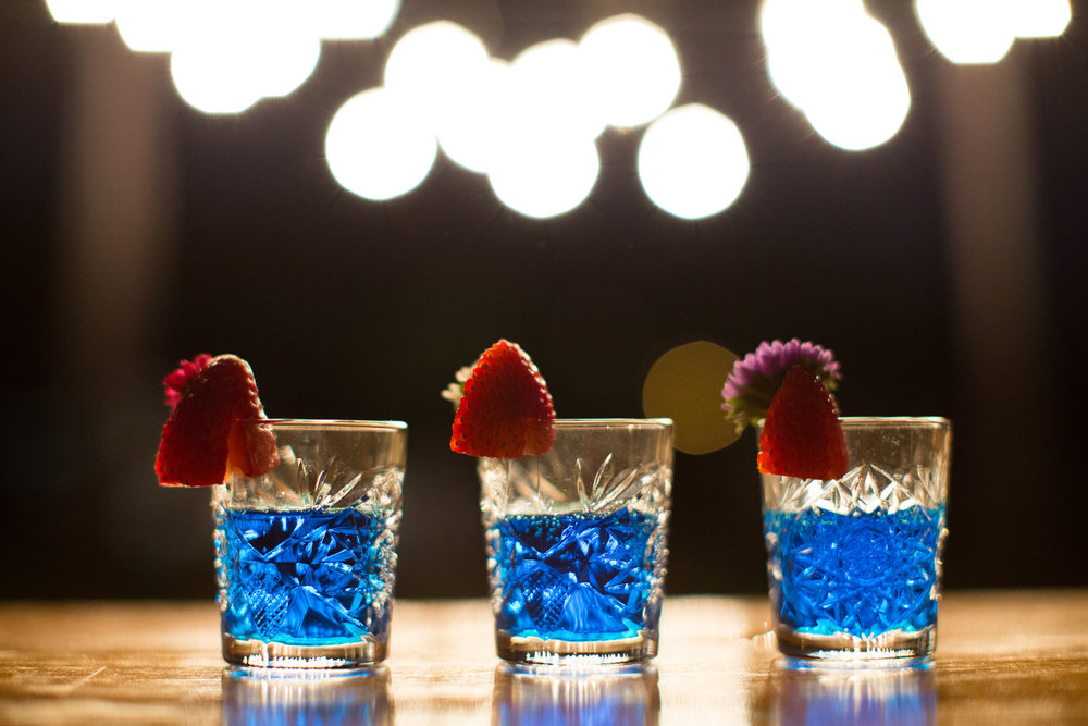 Gathering-Events-Brisbane-bar-tender-cocktail-hire-26.jpg
