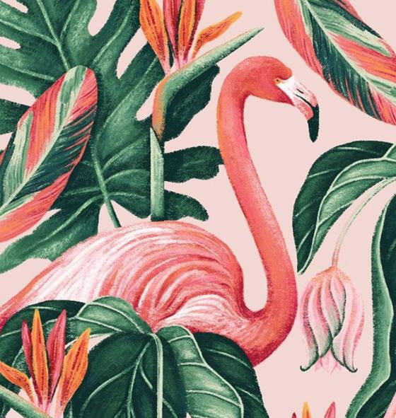 Raxenne Maniquiz, Designer & Illustrator