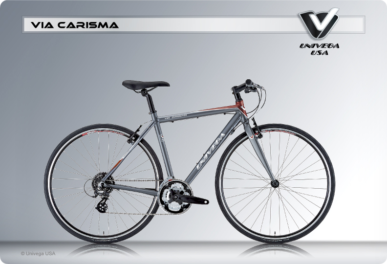 Univega-ViaCarisma-Image.jpg