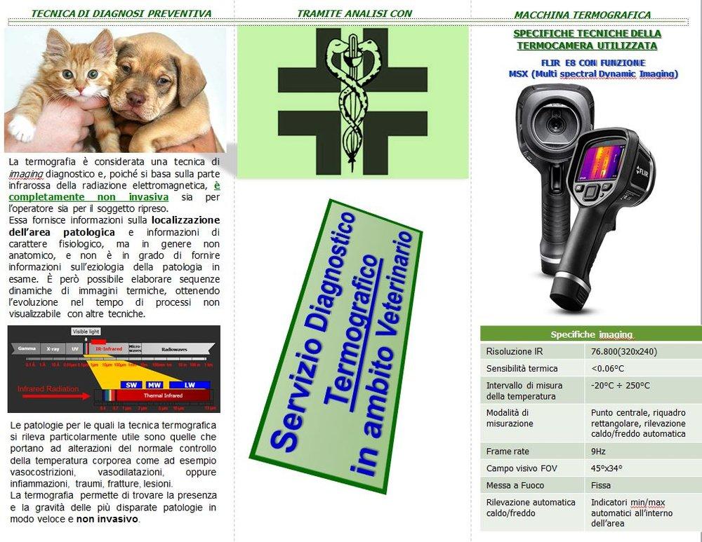 Servizio Diagnostico Termografico in ambito Veterinario