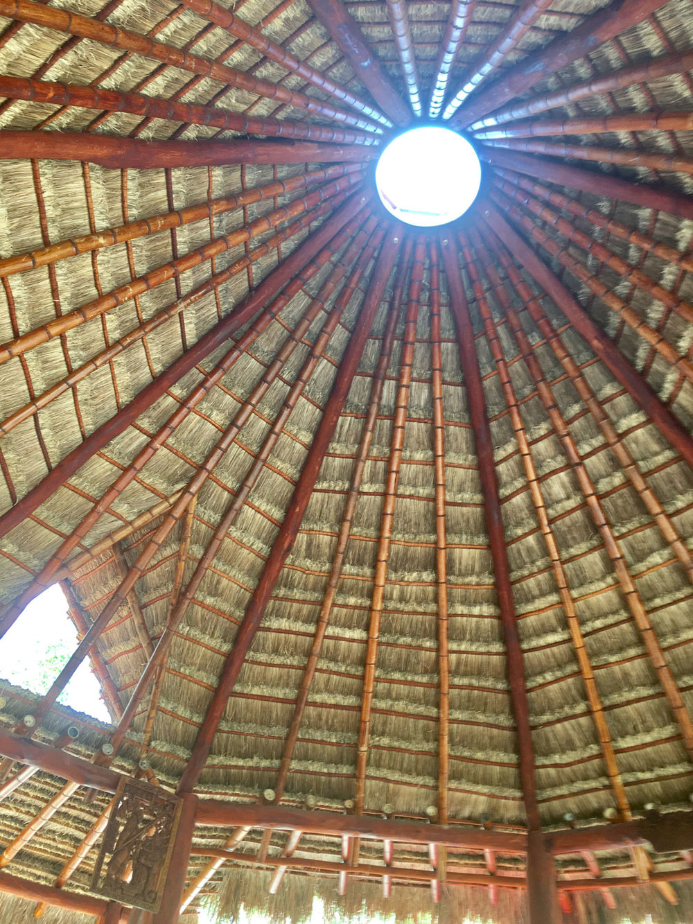 Ted's palapa for social events