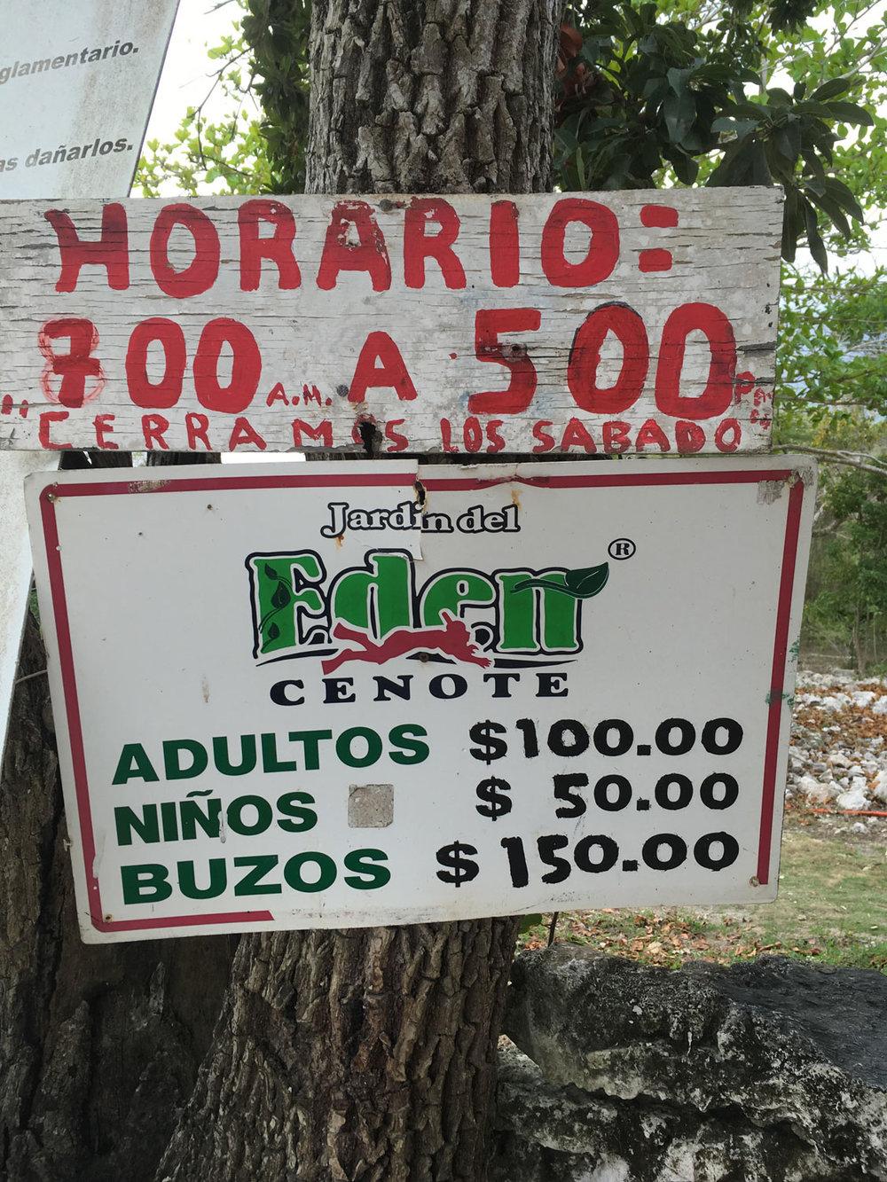 Hammocks_and_Ruins_Riviera_Maya_Mexico_Explore_What_to_Do_Playa_del_Carmen_Cenotes_29.jpg