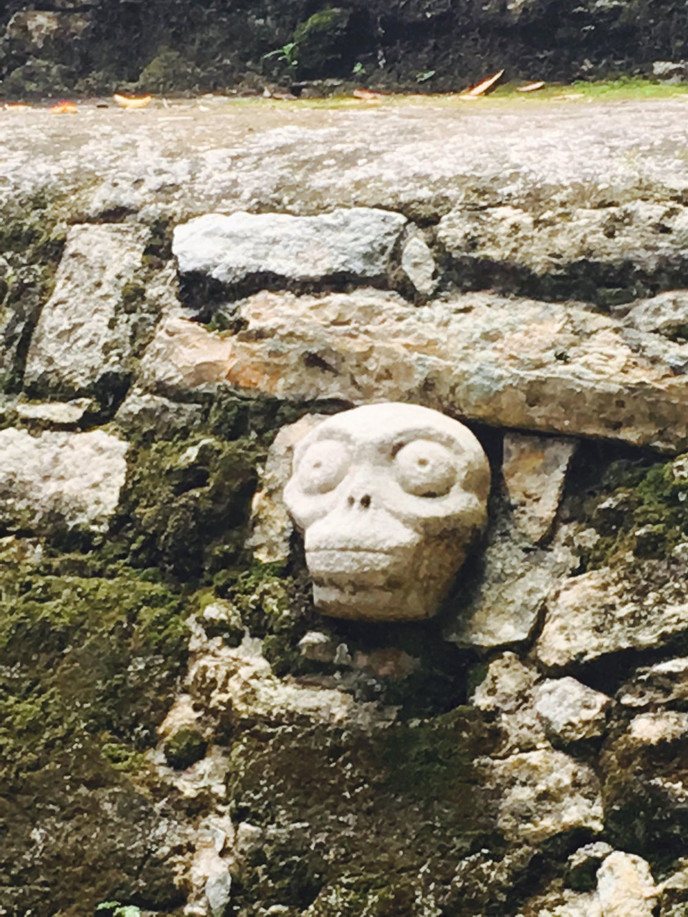 Skull by the Ball Court in the Cobá Group speaks of human sacrifice after the game.