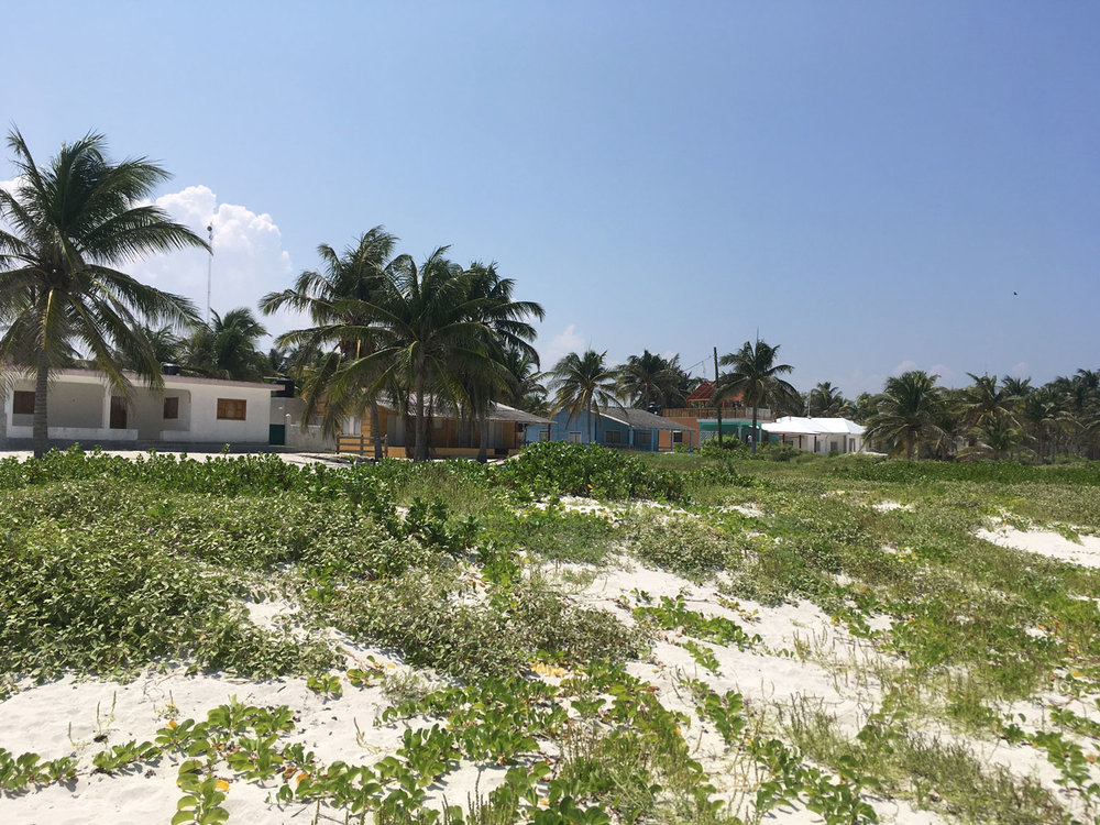 Hammocks_and_Ruins_Blog_Riviera_Maya_Mexico_Travel_Discover_Explore_Yucatan_Hammocks_Beaches_El_Cuyo_11.jpg