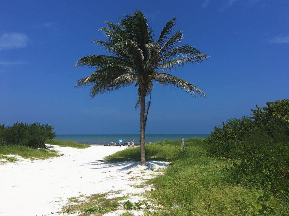 Hammocks_and_Ruins_Blog_Riviera_Maya_Mexico_Travel_Discover_Explore_Yucatan_Hammocks_Beaches_El_Cuyo_6.jpg