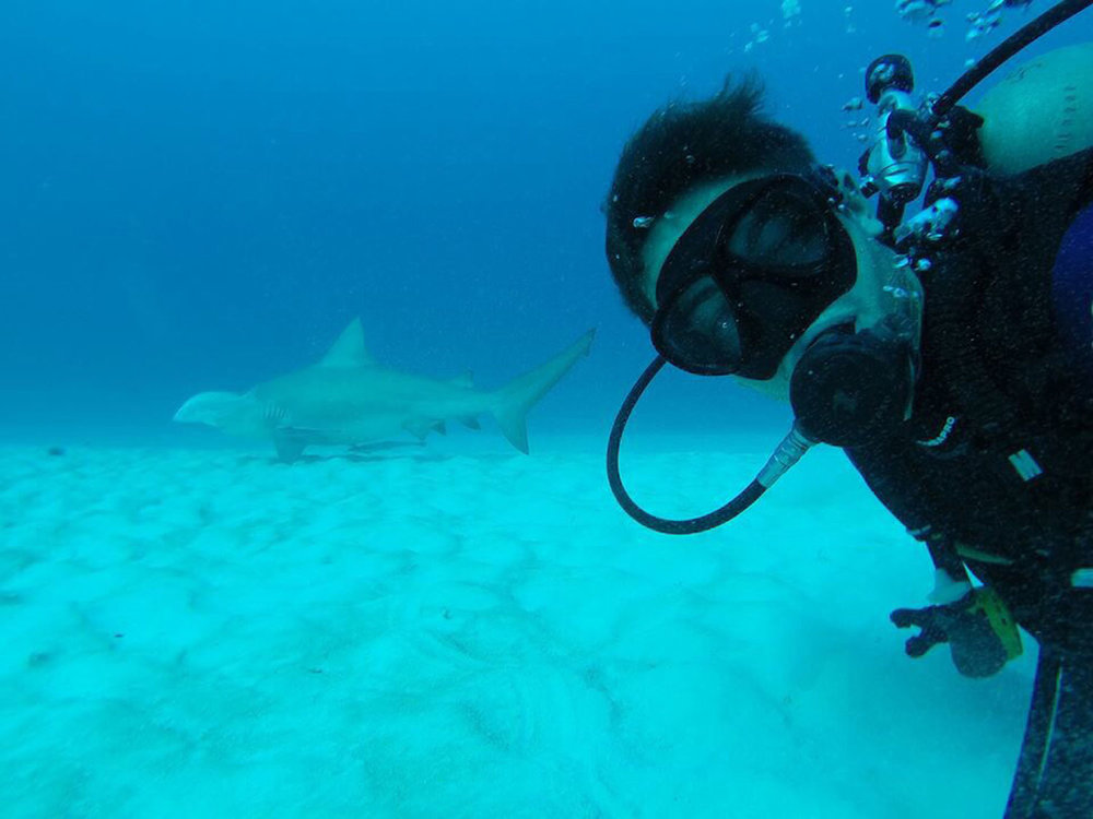 Our son Rhodri diving with sharks.