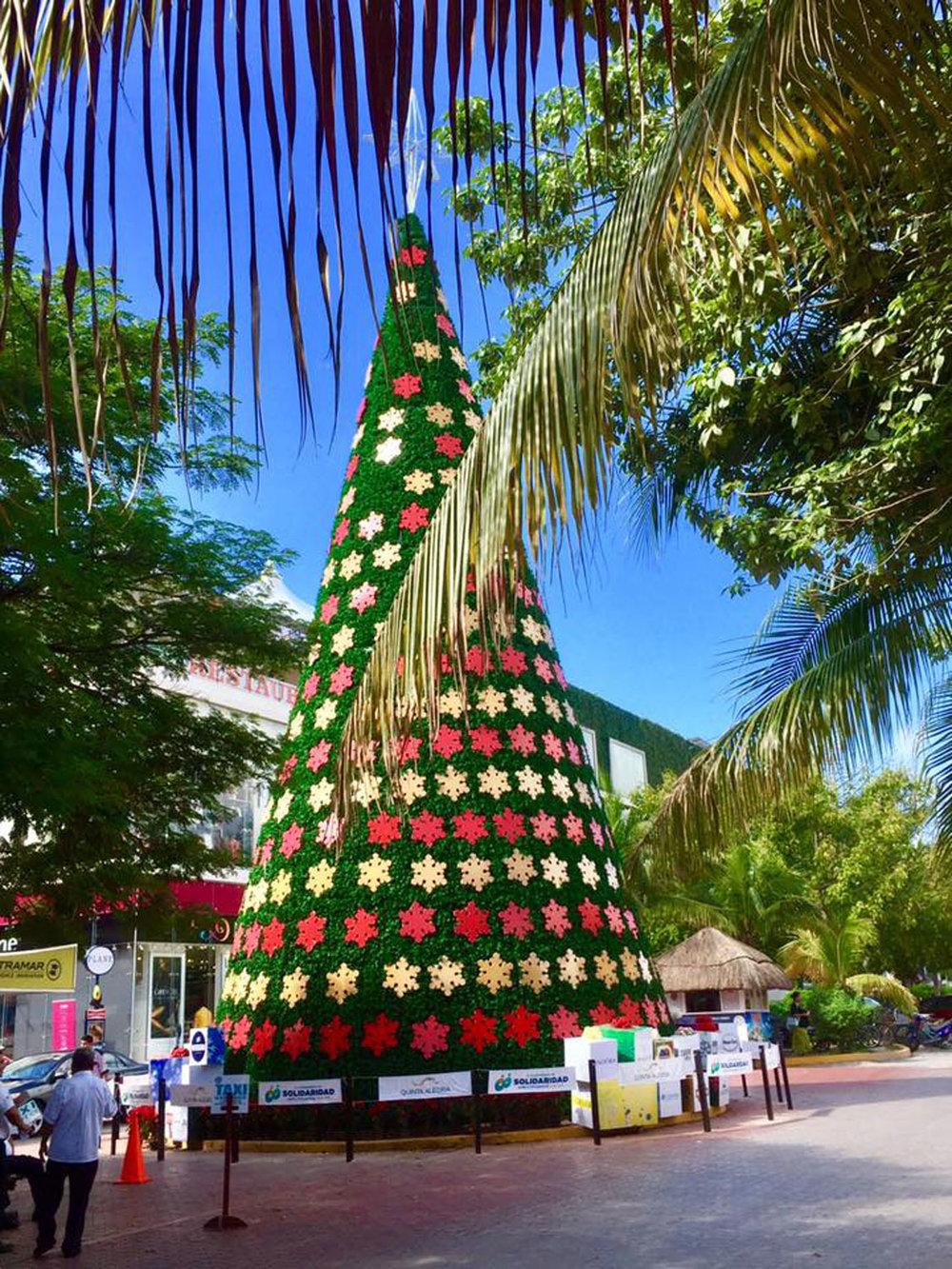 Hammocks_and_Ruins_Blog_Riviera_Maya_Mexico_Travel_Discover_Explore_What_to_do_Playa_del_Carmen_14.jpg