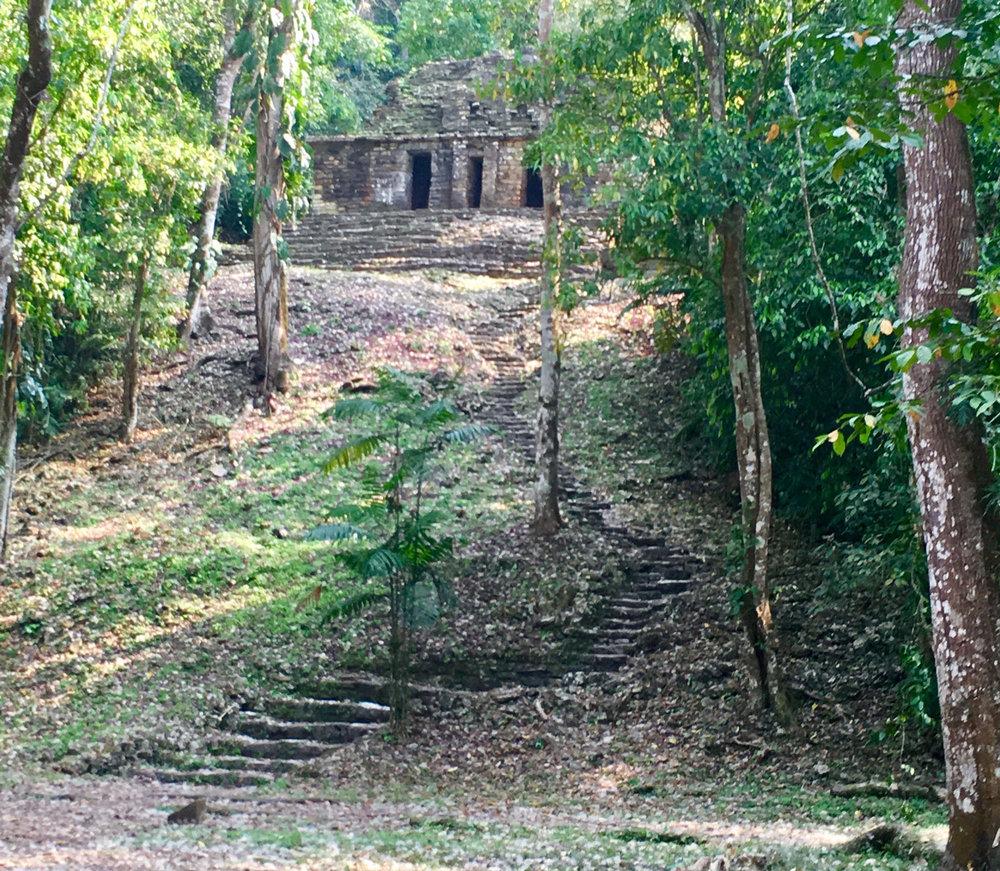 Hammocks_and_Ruins_Blog_Riviera_Maya_Mexico_Travel_Discover_Chiapas_What_to_do_Ruins_Yaxchilan_25.jpg