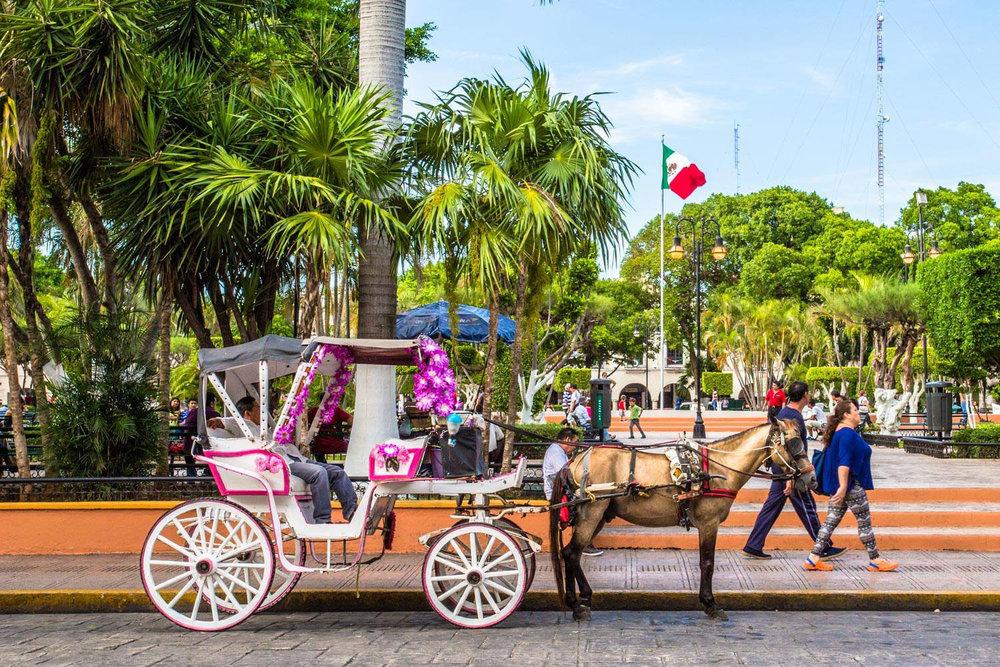 Hammocks_and_Ruins_Blog_Riviera_Maya_Mexico_Travel_Discover_Yucatan_What_to_do_Merida_5.jpg