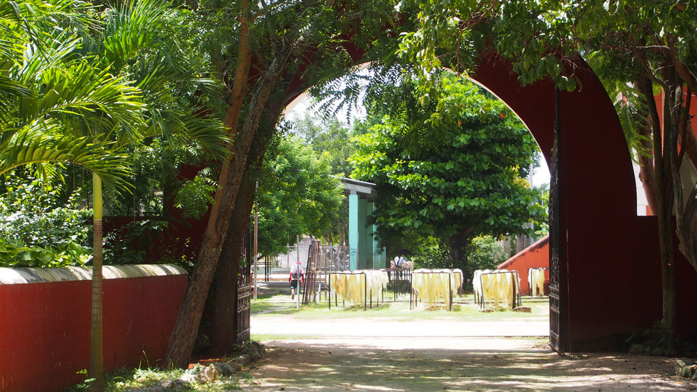 Hammocks_and_Ruins_Blog_Riviera_Maya_Mexico_Travel_Discover_Yucatan_What_to_do_Hacienda_Sotuta_de_Peon_1.jpg
