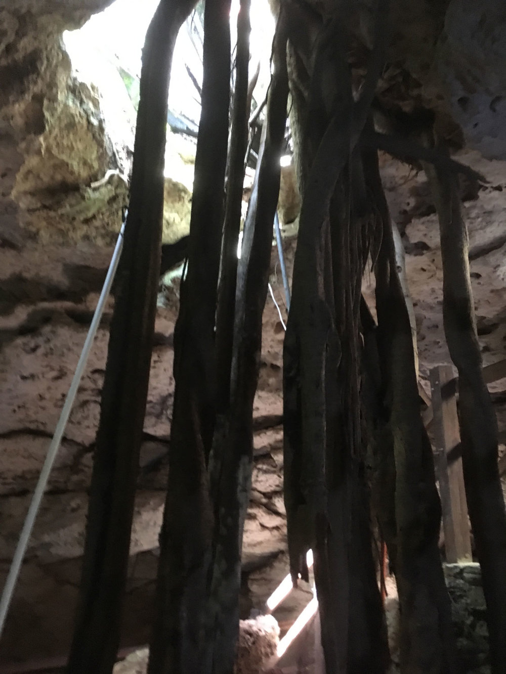 Tree roots hanging from the cenote ceiling. Right: The Chapel.
