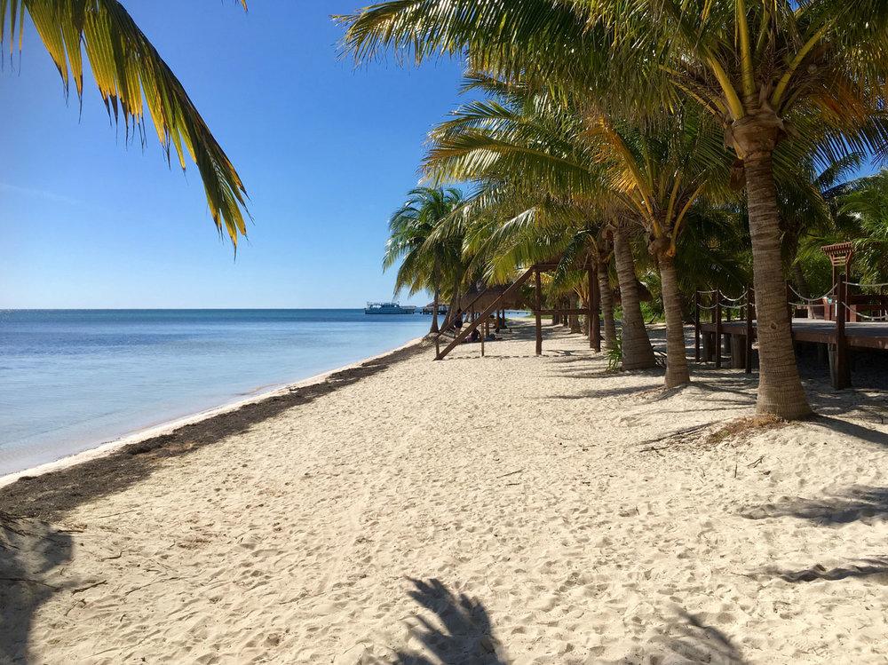 Hammocks_and_Ruins_Things_To_Do_Cancun_Explore_Riviera_Maya_Mexico_Cancun_Beaches_Coral_El_Mirador_II_7.jpg