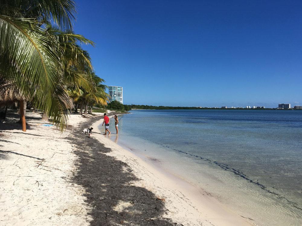 Hammocks_and_Ruins_Things_To_Do_Cancun_Explore_Riviera_Maya_Mexico_Cancun_Beaches_Coral_El_Mirador_II_5.jpg