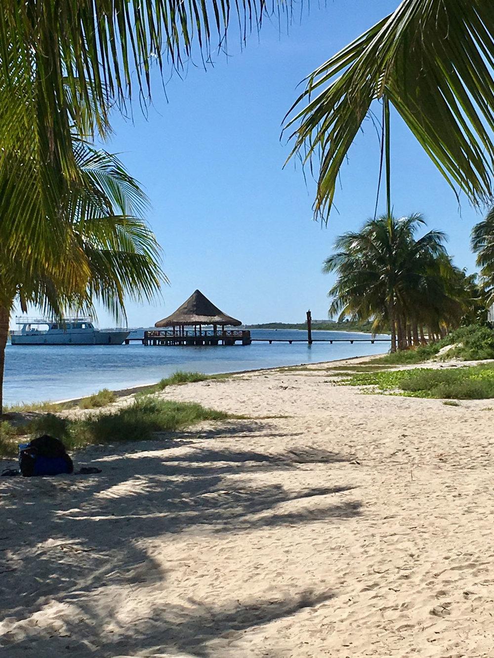 Hammocks_and_Ruins_Things_To_Do_Cancun_Explore_Riviera_Maya_Mexico_Cancun_Beaches_Coral_El_Mirador_II_9.jpg
