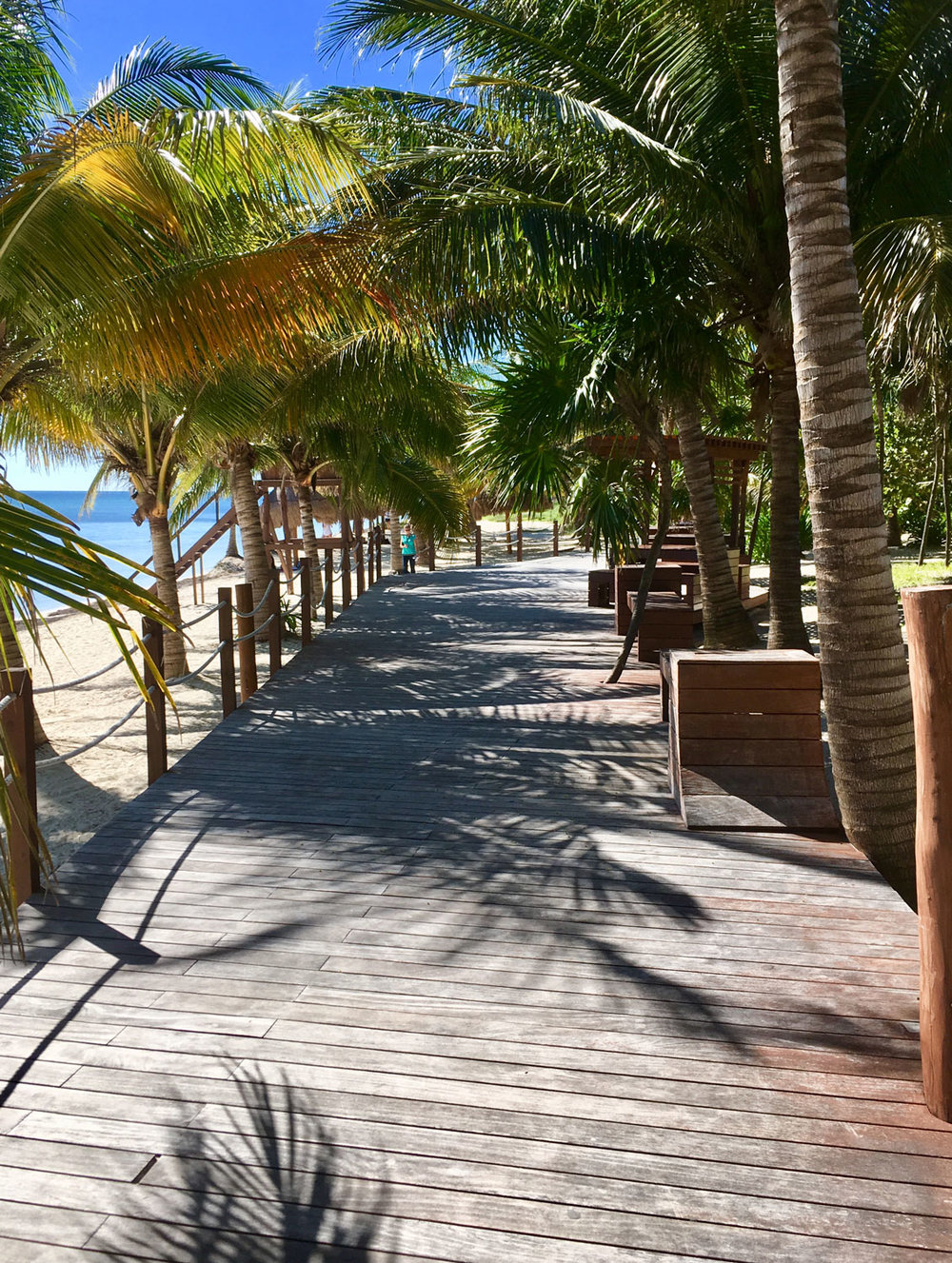 Hammocks_and_Ruins_Things_To_Do_Cancun_Explore_Riviera_Maya_Mexico_Cancun_Beaches_Coral_El_Mirador_II_2.jpg