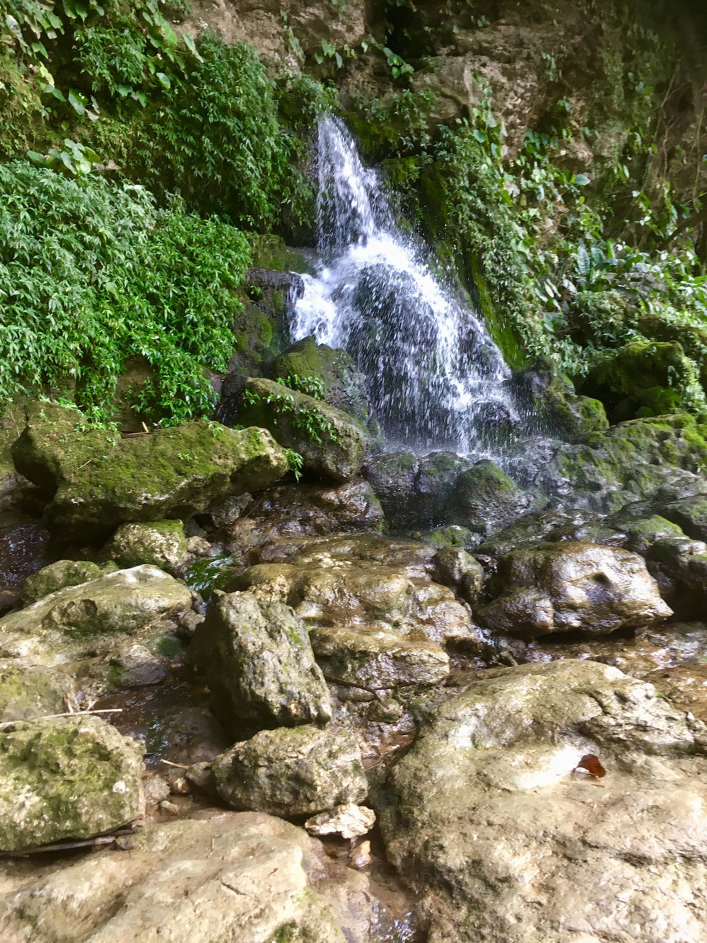 Hammocks_and_Ruins_Riviera_Maya_Mexico_What_to_Do_Lakes_Rivers_Chiapas_Palenque_Misol_Ha_Waterfalls_11.jpg