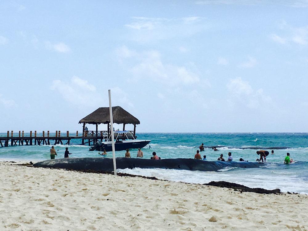 Hammocks_and_Ruins_Town_Villages_Quinatana_Roo_Riviera_Maya_Mexico_Hammocks_Playa_Explore_Beaches_23.jpg