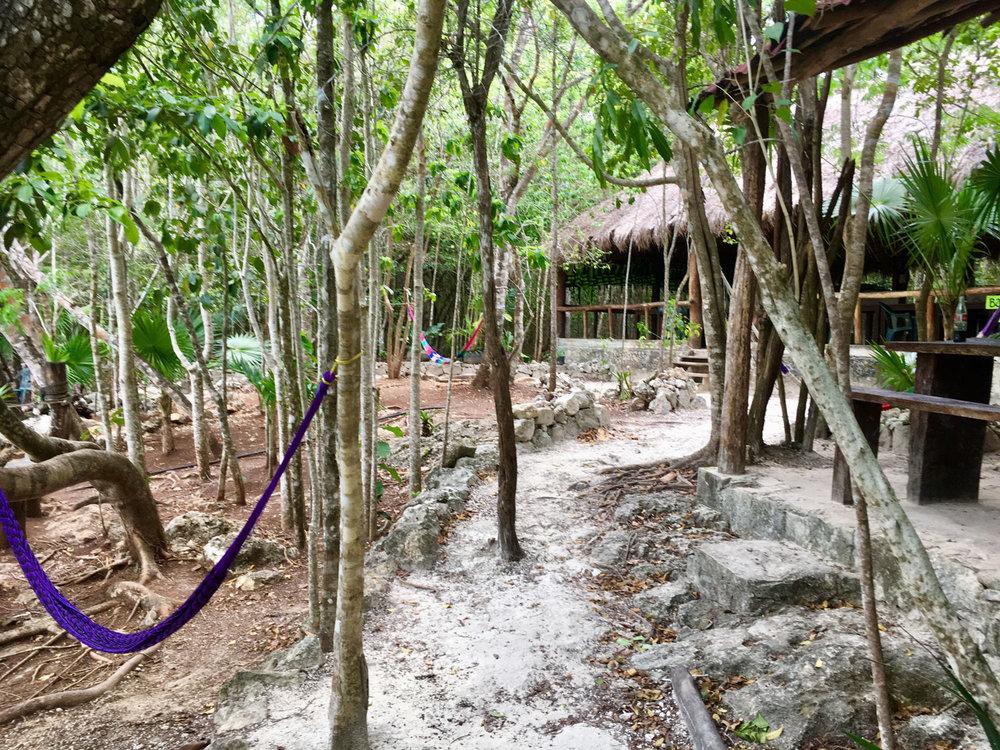 Hammocks_and_Ruins_Blog_Riviera_Maya_Mexico_Travel_Discover_Cenotes_Playa_del_Carmen_Tulum_Coba_Cenote_Trail_Las_Mojarras_6.jpg