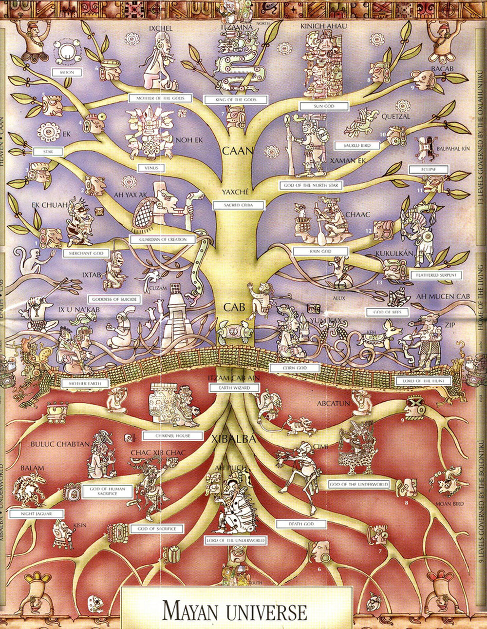 Mayan depiction of a ceiba tree: nine layers of the Underworld, 13 layers of the sky and the crocodile as Earth. From a local brochure.