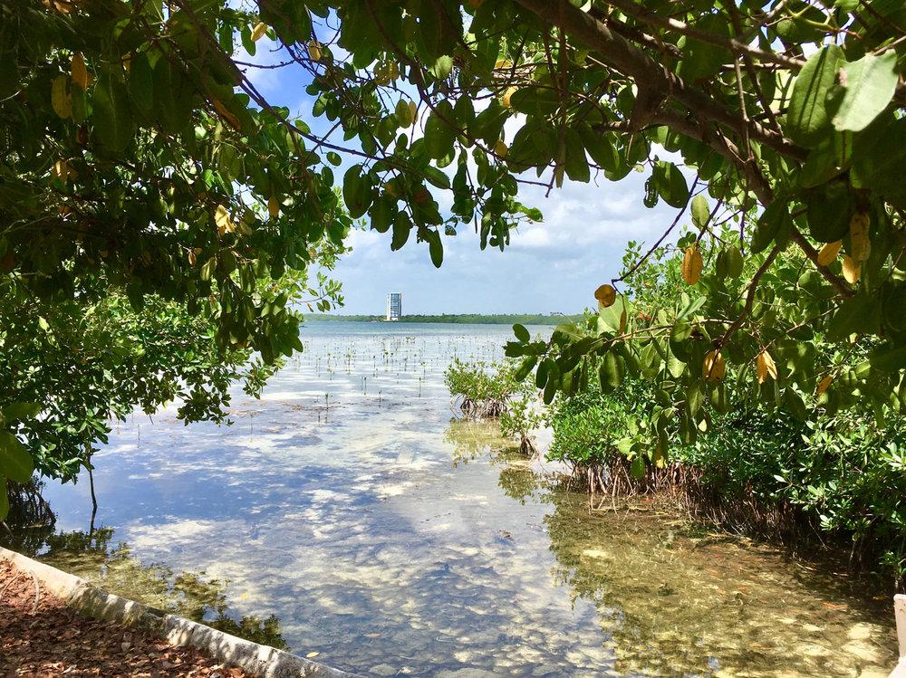 Hammocks_and_Ruins_Blog_Riviera_Maya_Mexico_Travel_Discover_Explore_Yucatan_Hammocks_Beaches_Near_Cancun_Punta_Nizuc_6.jpg