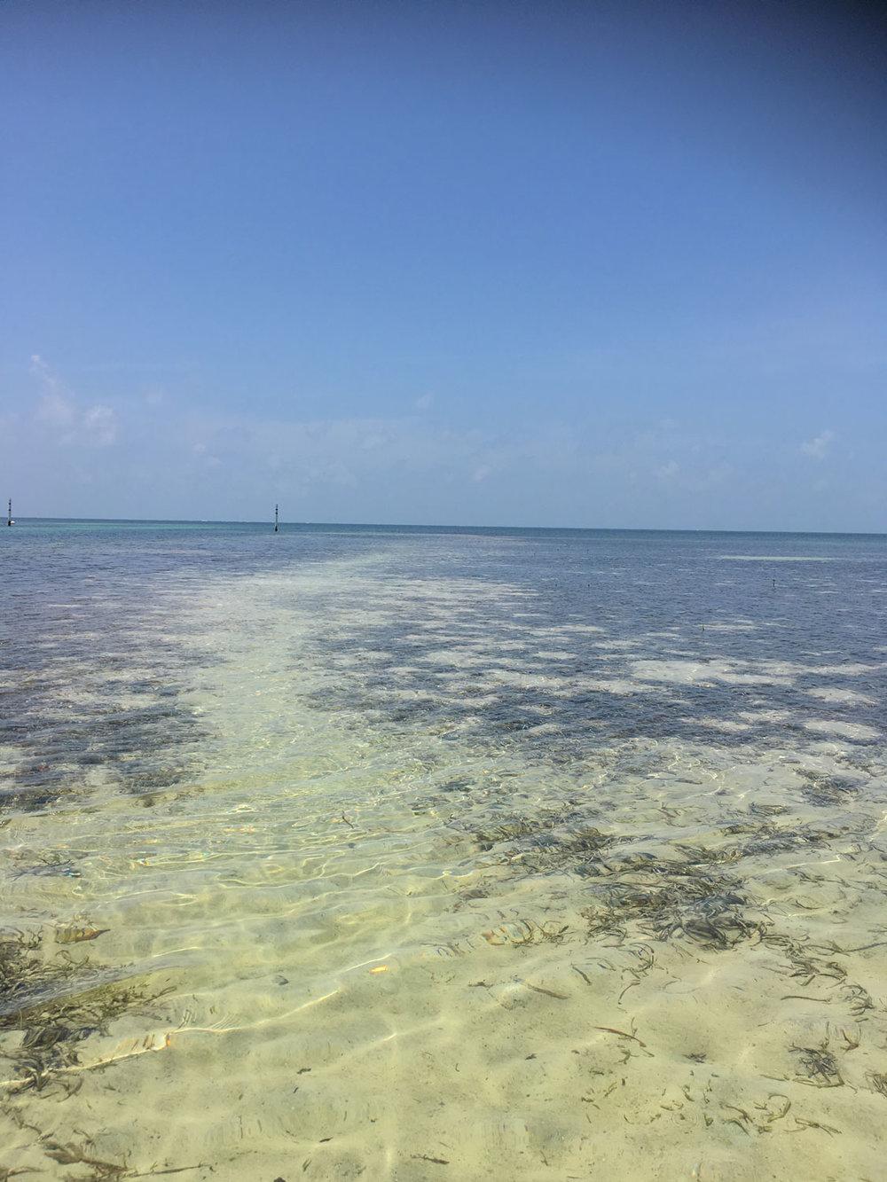Hammocks_and_Ruins_Blog_Riviera_Maya_Mexico_Travel_Discover_Explore_Yucatan_Hammocks_Beaches_Near_Cancun_Punta_Nizuc_27.jpg