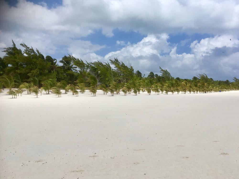 Hammocks_and_Ruins_Riviera_Maya_What_to_Do_Playa_Del_Carmen_Beaches_Maroma_Beach_36.jpg