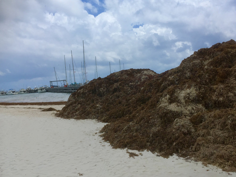 Hammocks_and_Ruins_Riviera_Maya_What_to_Do_Playa_Del_Carmen_Beaches_Maroma_Beach_33.jpg