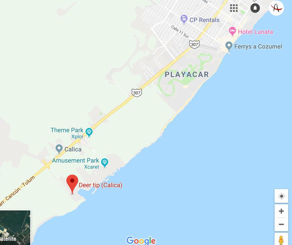 Hammocks_and_Ruins_Riviera_Maya_What_to_Do_Playa_Del_Carmen_Beaches_Punta_Venado_15.jpg
