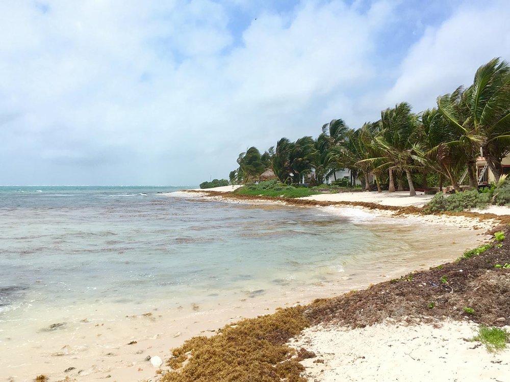 Hammocks_and_Ruins_Riviera_Maya_What_to_Do_Playa_Del_Carmen_Beaches_Tankah_Bay_18.jpg