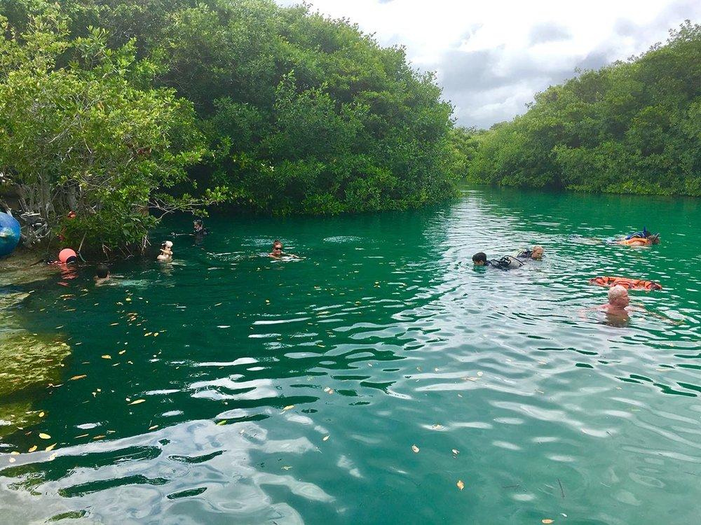 Hammocks_and_Ruins_Riviera_Maya_What_to_Do_Playa_Del_Carmen_Tulum_Cenotes_Casa_Cenote_2.jpg