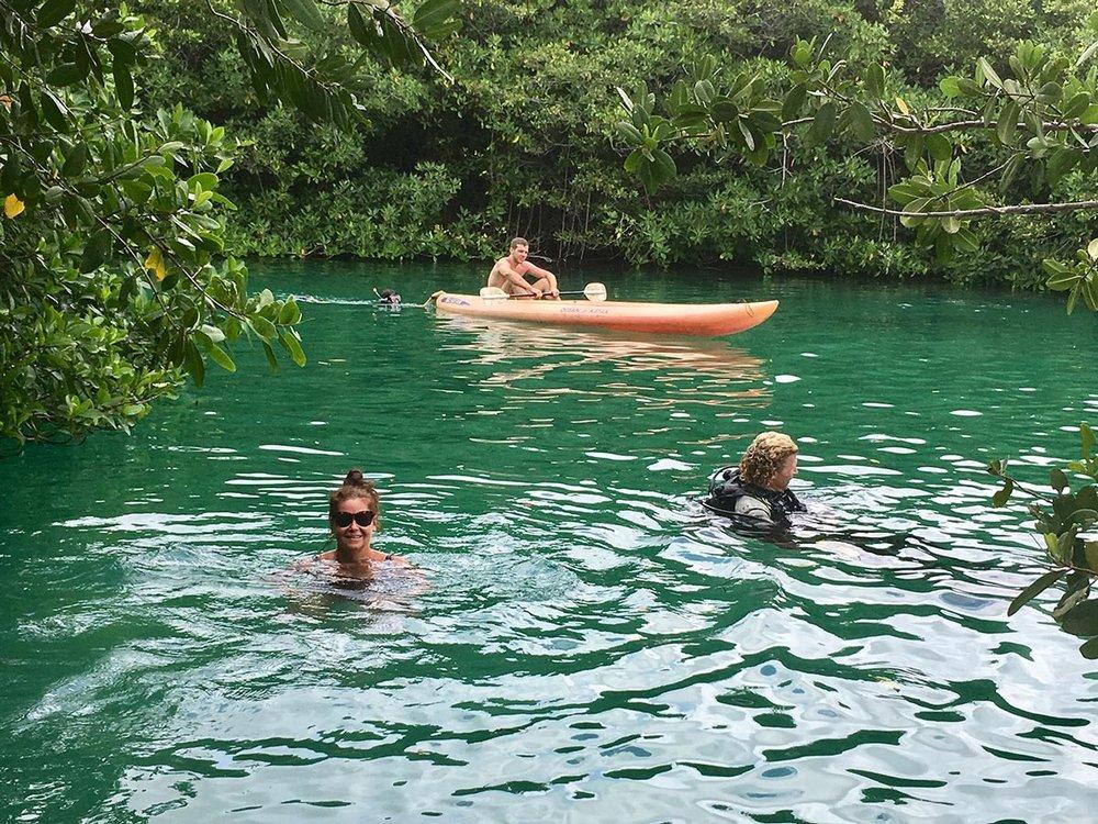Hammocks_and_Ruins_Riviera_Maya_What_to_Do_Playa_Del_Carmen_Tulum_Cenotes_Casa_Cenote_14.jpg