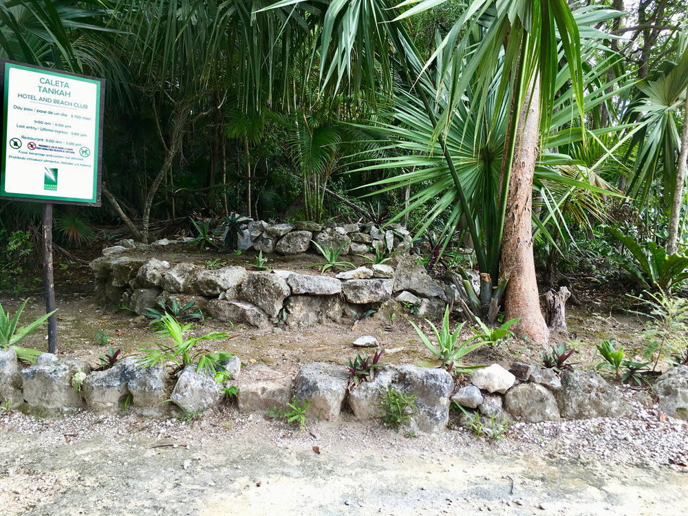 Old ruins. Right: a cave in the jungle.