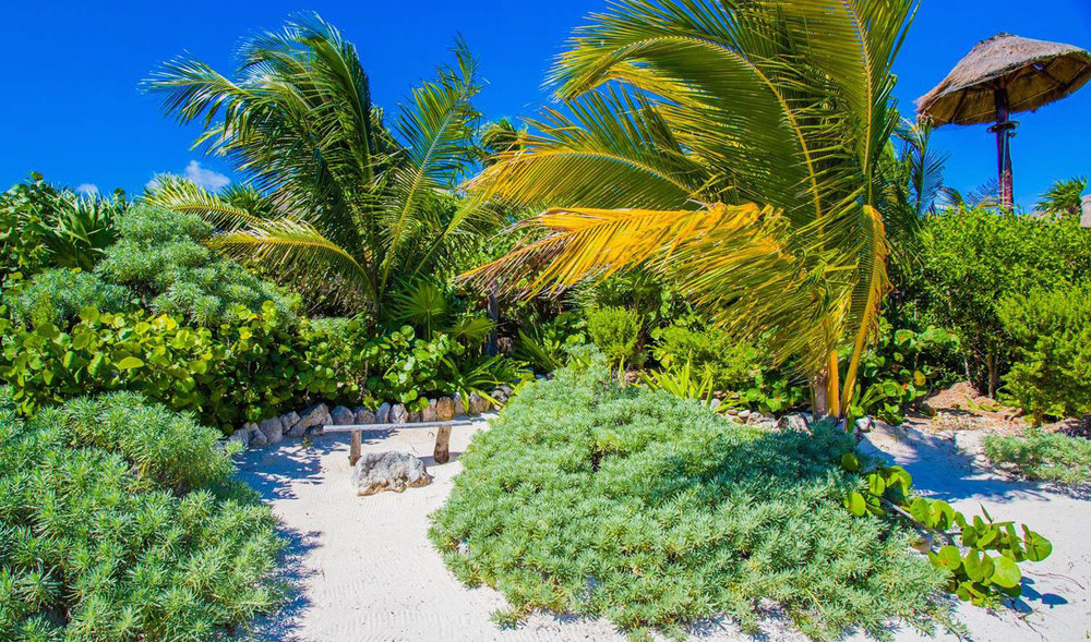 Hammocks_and_Ruins_Riviera_Maya_What_to_Do_Tulum_Beaches_Soliman_Bay_5.jpg