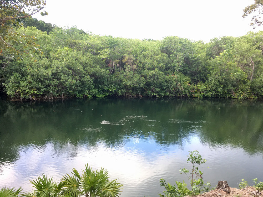 The cenote by the Jaguar temple.