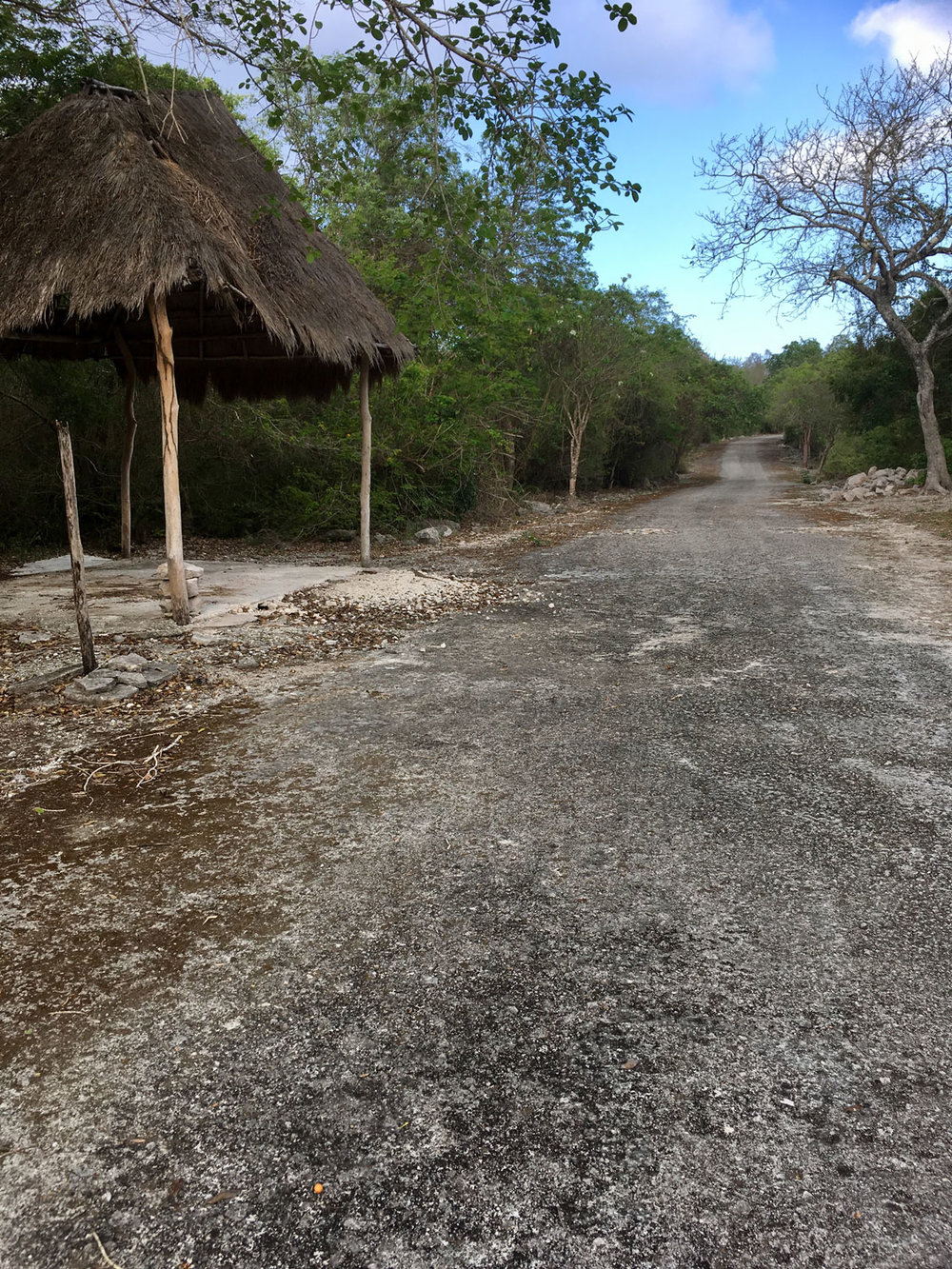 The cement road between groups B and C: comfortable but less fun.