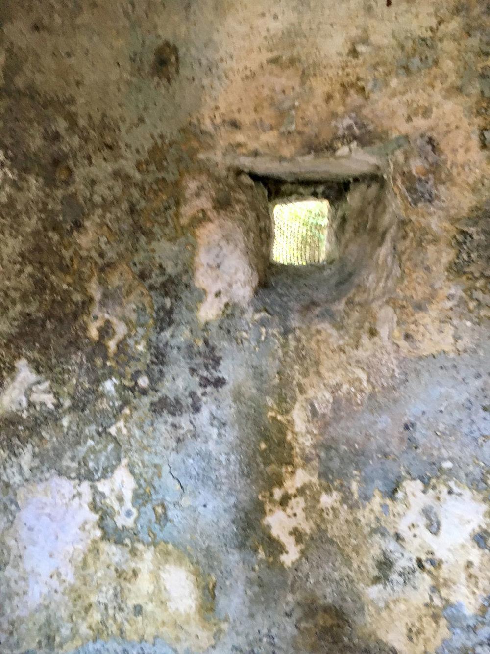 Hammocks_and_Ruins_Riviera_Maya_What_to_Do_Tulum_Ruins_Xcel_Ha_52.jpg