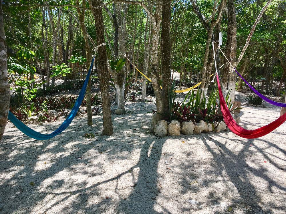 Plenty of hammock areas around the West Eye cave.