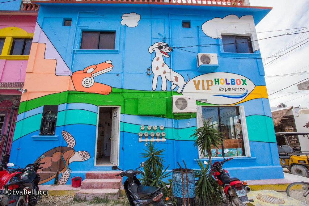 Hammocks_and_Ruins_Riviera_Maya_What_to_Do_Cancun_Playa_Del_Carmen_Islands_Isla_Holbox_21.jpg