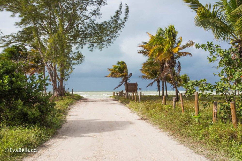 Punta Coco is a truly secluded place.
