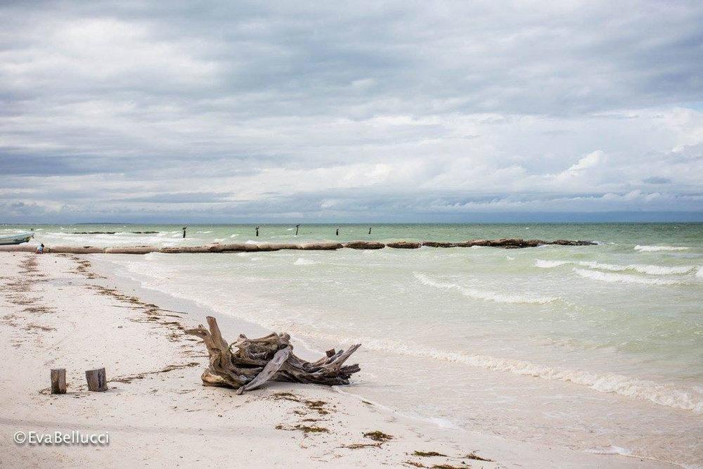 Hammocks_and_Ruins_Riviera_Maya_What_to_Do_Cancun_Playa_Del_Carmen_Islands_Isla_Holbox_8.jpg
