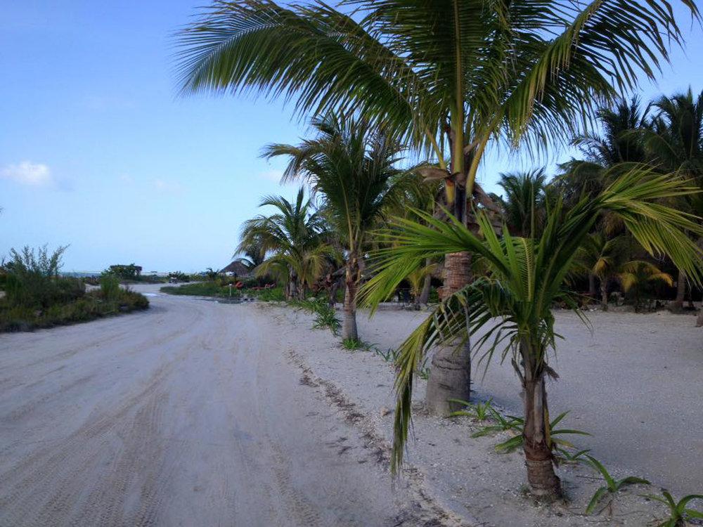 Hammocks_and_Ruins_Riviera_Maya_What_to_Do_Cancun_Playa_Del_Carmen_Islands_Isla_Holbox_34.jpg