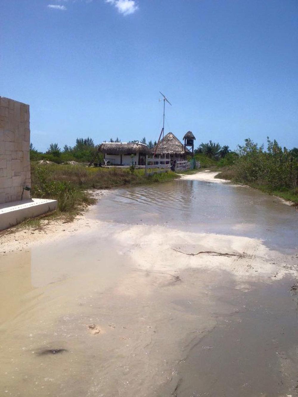Hammocks_and_Ruins_Riviera_Maya_What_to_Do_Cancun_Playa_Del_Carmen_Islands_Isla_Holbox_35.jpg