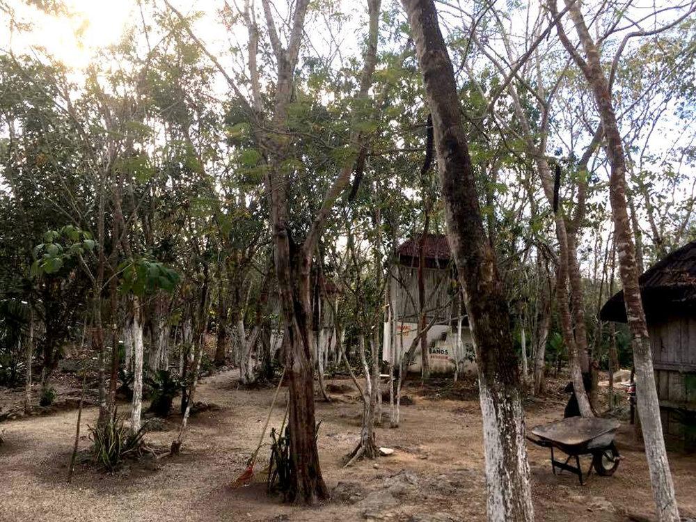 Hammocks_and_Ruins_Blog_Riviera_Maya_Mexico_Travel_Discover_Cenotes_Car_Wash_4.jpg