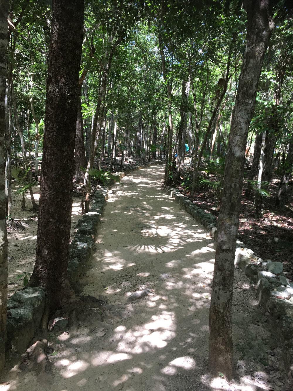 Hammocks_and_Ruins_Riviera_Maya_What_to_Do_Playa_Del_Carmen_Tulum_Cenotes_Cenote_Escondido_6.jpg