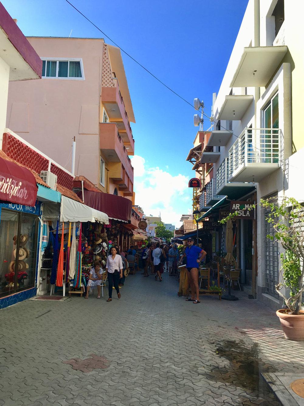 Hammocks_and_Ruins_Riviera_Maya_What_to_Do_Playa_Del_Carmen_Tulum_Islands_Isla_Mujeres_20.jpg